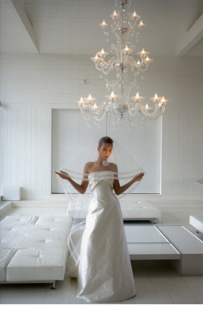 O Portais robe bustier 3 plis au decolleté en doupion de soie et voile assorti photo felicia sisco