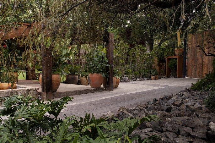 Casa Xipe