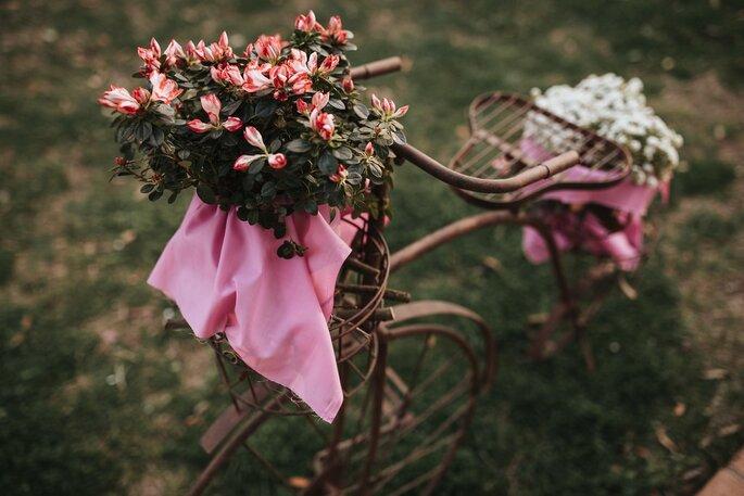Nicober Wedding Planner
