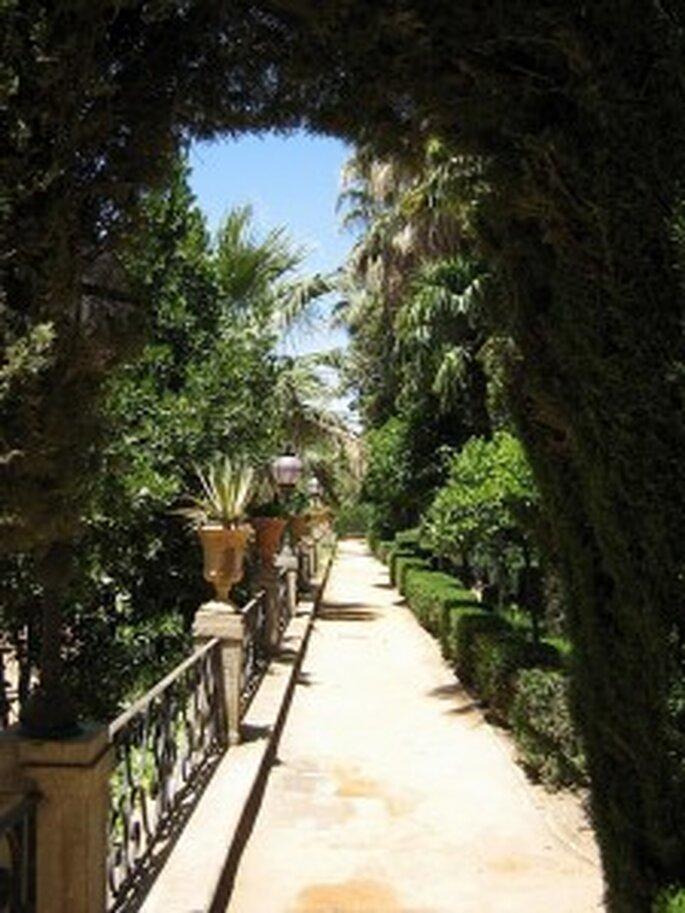 Laissez-vous tenter par les charmes de l'Andalousie