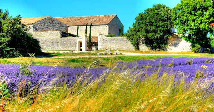 Le Domaine de Sarson - Mariage, Couple, Provence, Sud Provence, Lavande, Meilleurs lieux, salle de mariage, salle de réception