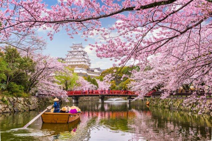 Flitterwochen in Japan