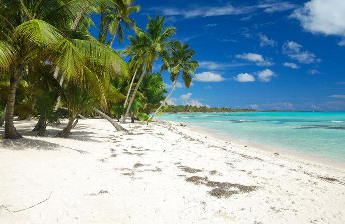 Logitravel. Punta Cana. Créditos: Shutterstock