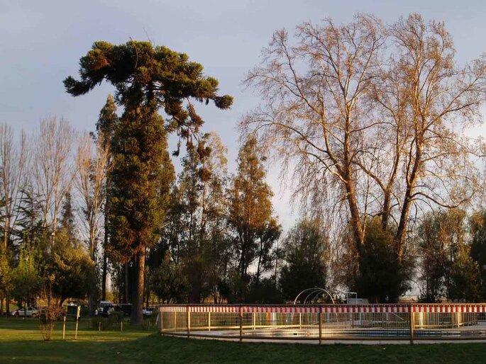 Parque Lemuhue