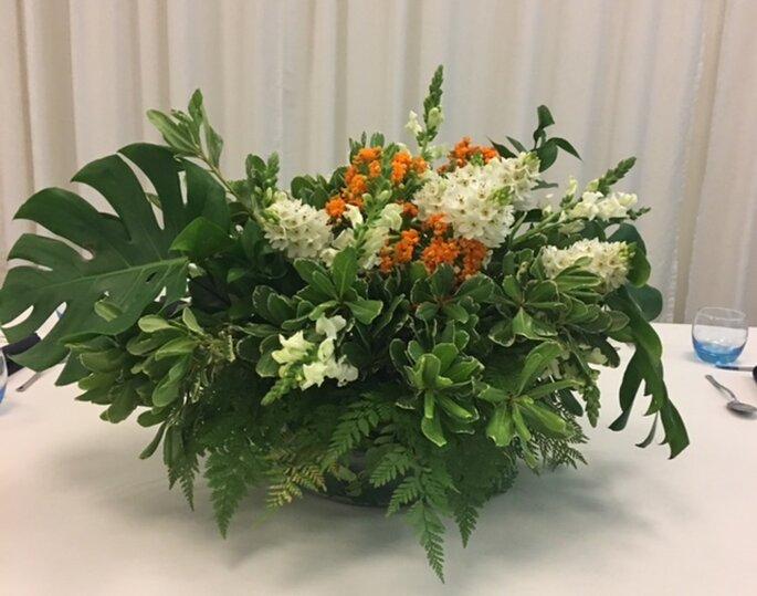 Karla Lamounier Flower & Home