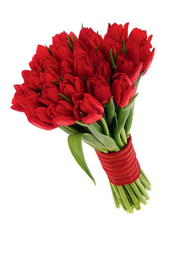 Feliz Cumple Años Natalia Tulipanes-rojos