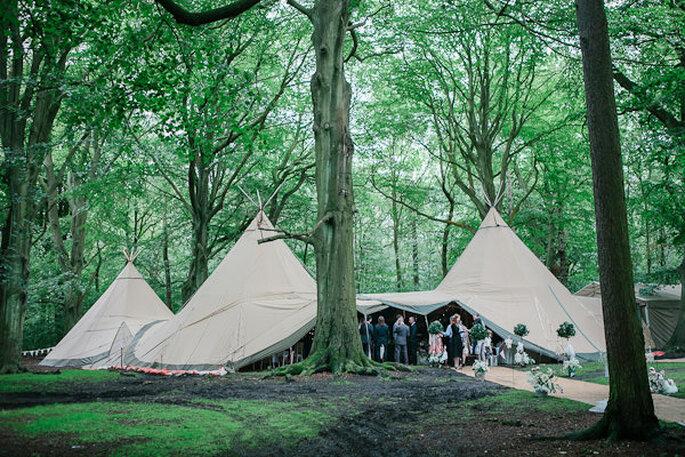 woodland9