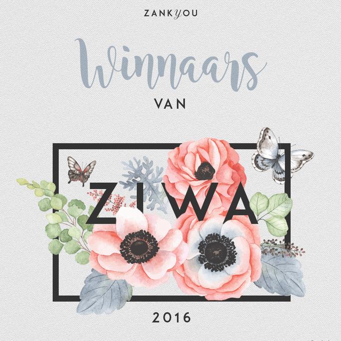 NL-ziwa2016-comunicar-rrss (1)