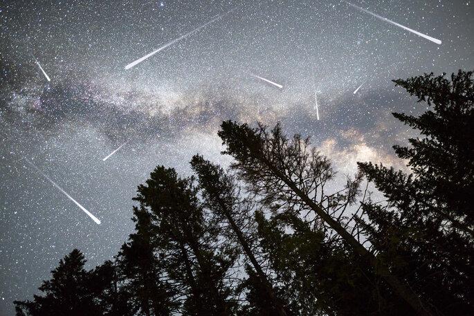 Foto vía Shutterstock:  Belish