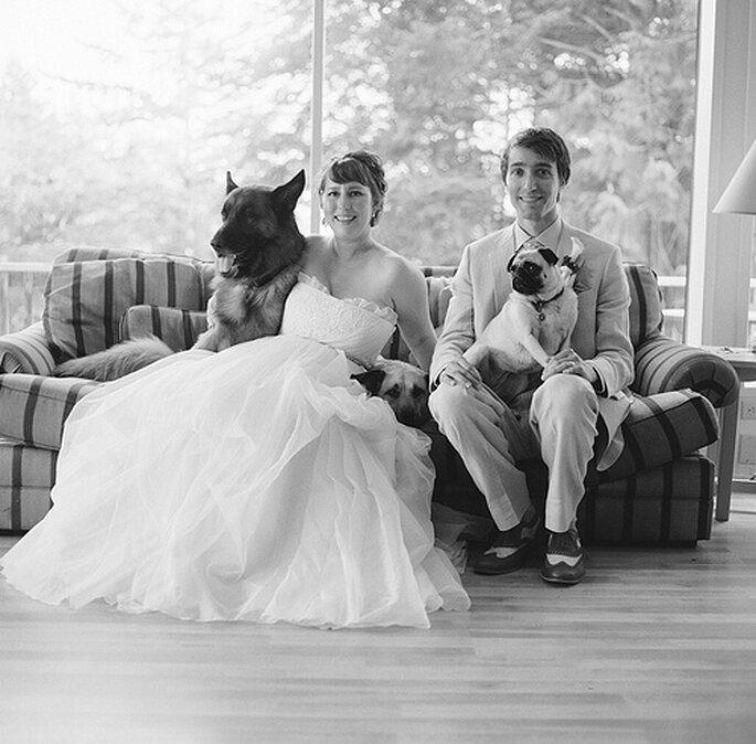 Los perros en las bodas. Foto de One Love Photo
