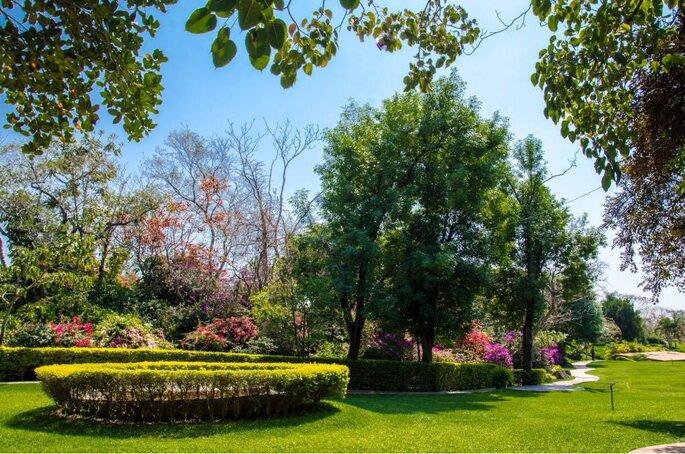 Jardín El Cid - Morelos