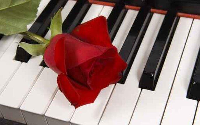 """Предпросмотр - Схема вышивки  """"Роза на рояле """" - Схемы автора  """"sneg2806..."""