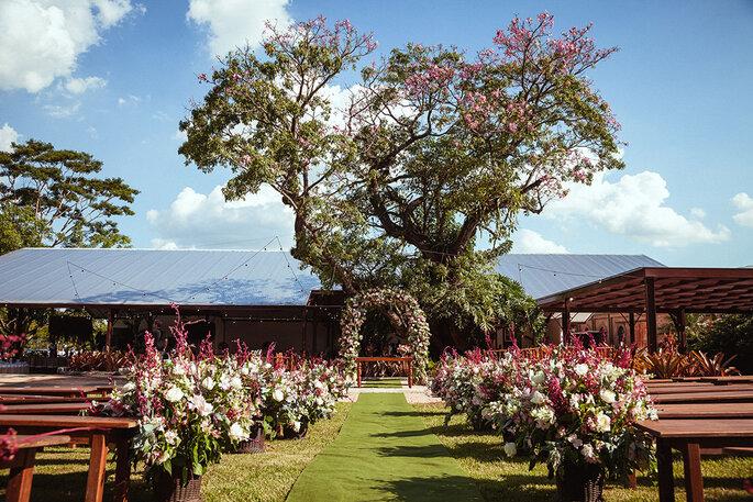 Fazenda Quilombo Limeira