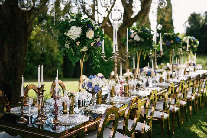 Erika Morgera - My Wedding