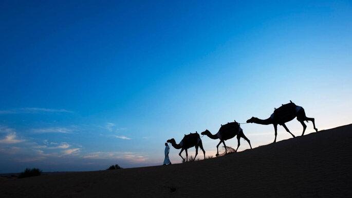 Printemps Voyages / Hôtel Al Maha