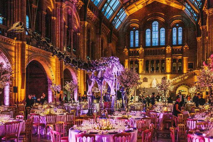 Natural History Museum Wedding Reception