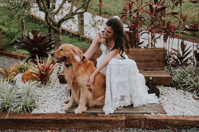 cachorro e noiva