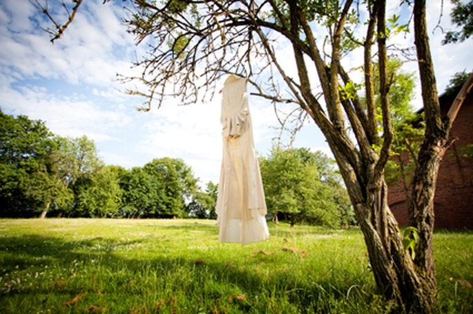 Brautkleid im Baum