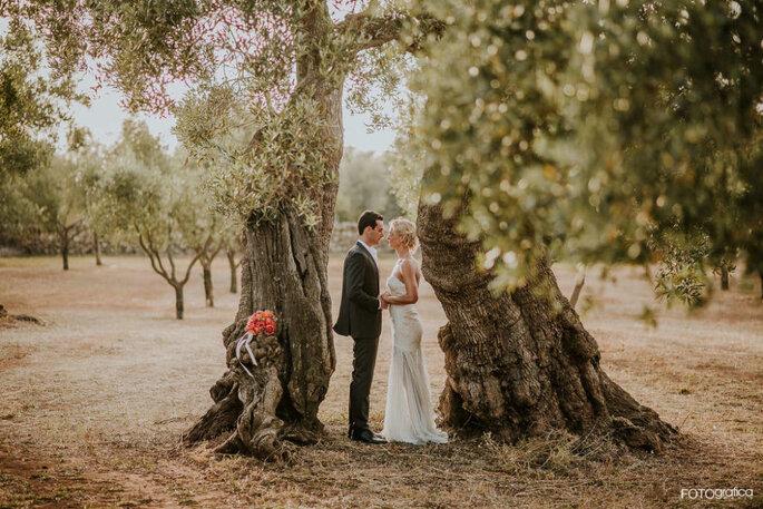 19a0fcced8d0 Sposarsi in un campo di Ulivi  tutto l incanto di una natura ...