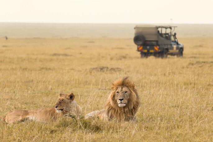 Kenia - Foto: Ana Gram / Shutterstock