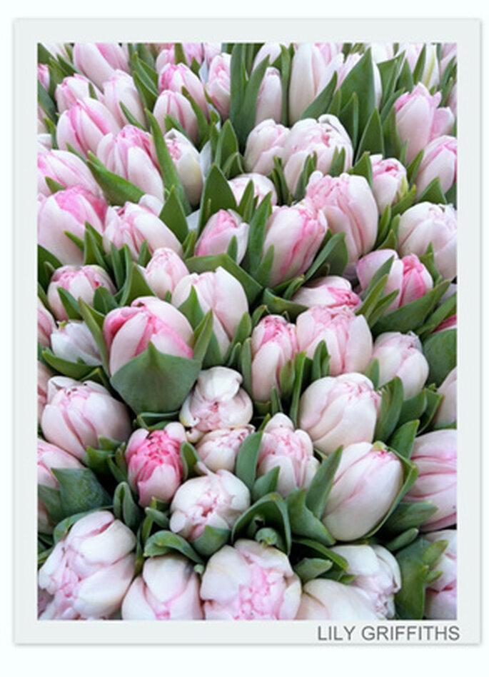 Fleurs bouquets de mariée
