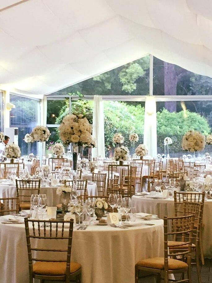 Maria Oliveira Wedding Events Planner