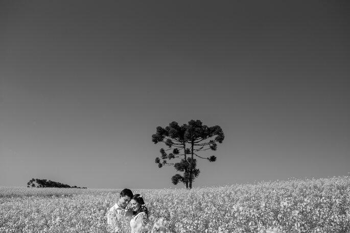 Fotos premiadas no Brasil e no exterior