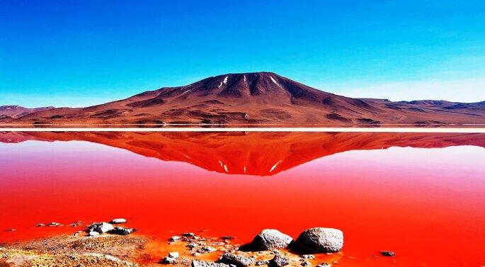 Foto: Salt Bolivia