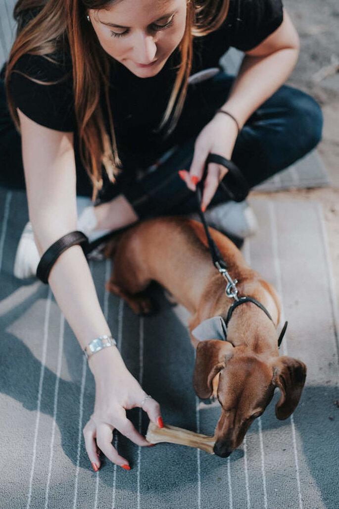 DogSitting para eventos