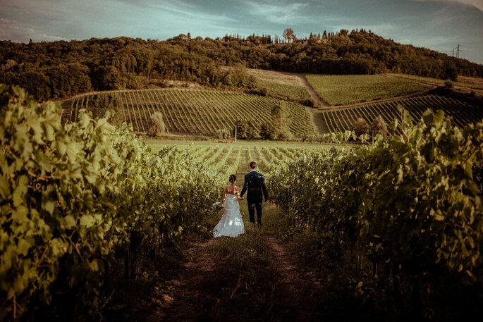 Deux mariés , de dos, se tenant par la main, au coeur de plusieurs hectares de vignes