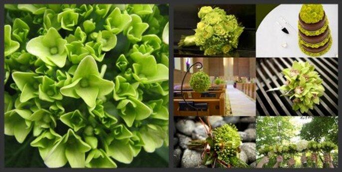 Flores verdes para tu boda