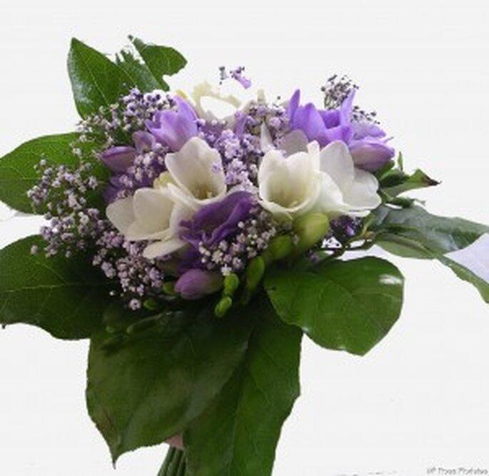 Ramo de novia en fresias blancas y lila, con ilusión y hojas verdes para aportar una cuota de luz al vestido     Ramo de novia en fresias blancas y lila, con ilusión y hojas verdes para aportar una cuota de luz al vestido