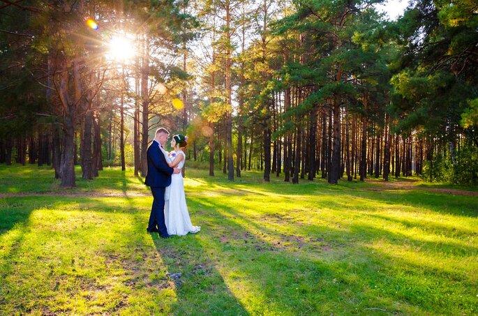 Photo de deux mariés enlacés au milieu d'une forêt