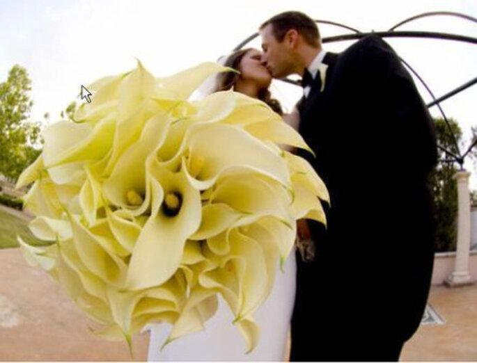 Cada novia tiene su propia flor. ¿Sabes cuál es la tuya?