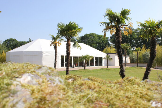 Domaine de la Renarde - vaste espace vert et palmiers