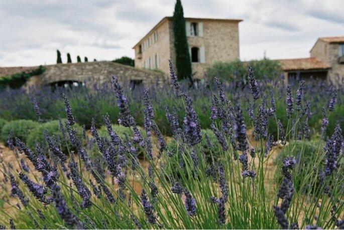 Mariage en Provence, un cadre d'exception - Label' Emotion