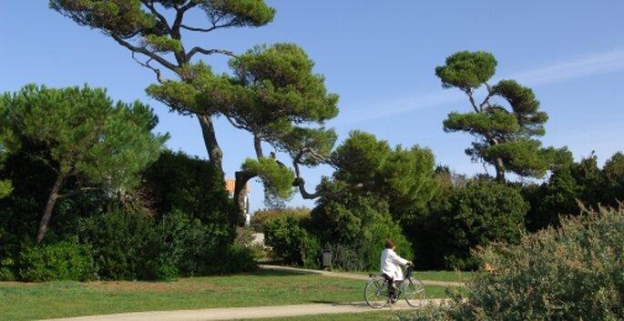 Photo : site ville La Rochelle
