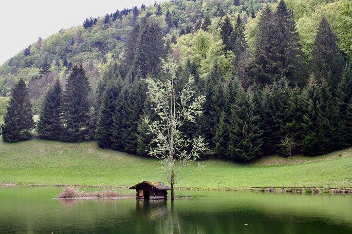 Une petite cabane sur un lac aux abords d'une forêt