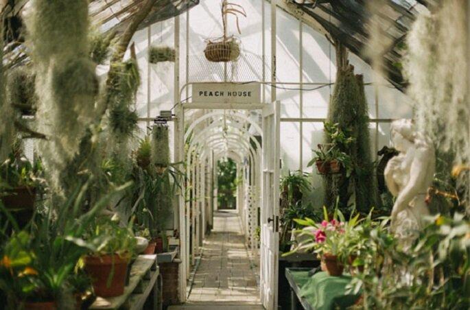 greenhouse-wedding-05