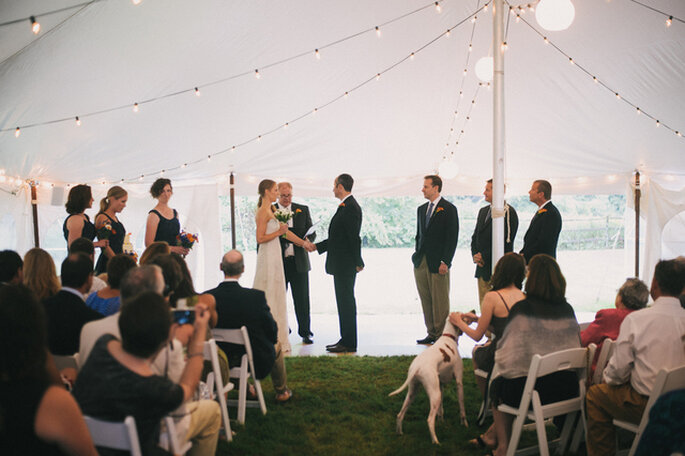 La mascota también participa del cortejo. Foto: Alexandra Roberts Wedding Photograph