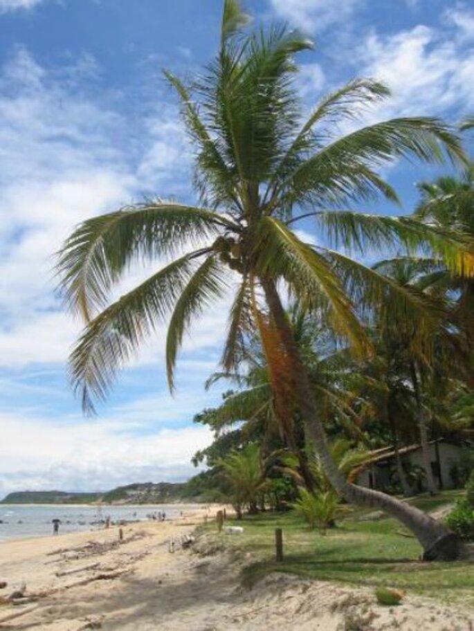 Des Seychelles à la République Dominicaine, en passant par le Mexique, vous avez l'embarras du choix pour votre voyage de noces - Source : http://www.holidaycheck.fr/