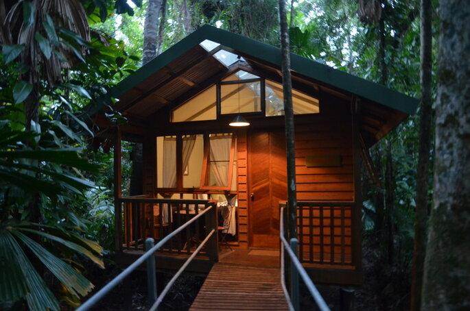 Daintree Lodge
