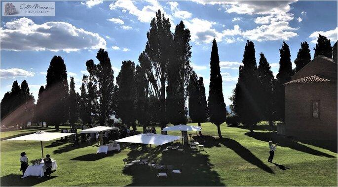 Un parc paysager ombragé par des arbres et des parasols