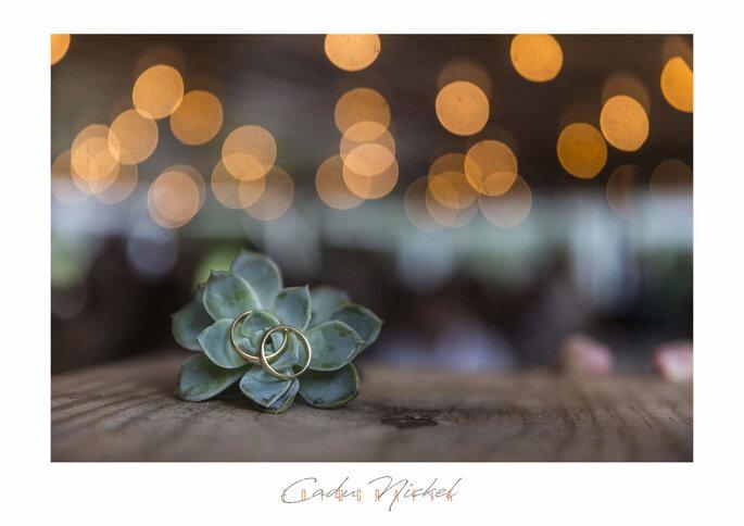 Cadu Nickel Fotografia