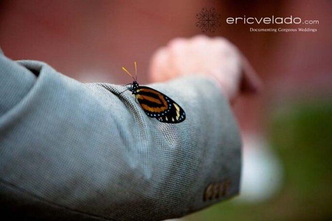 Liberación de mariposas en tu boda. Imagen Eric Velado