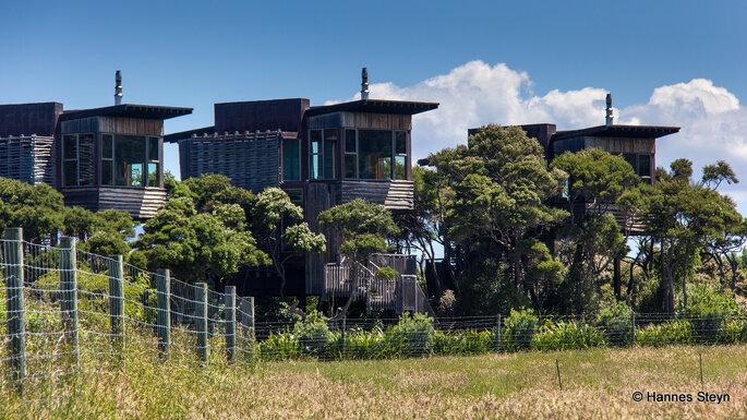Hapuku Loge + Tree Houses / Photo via Flickr - Hannes Steyn