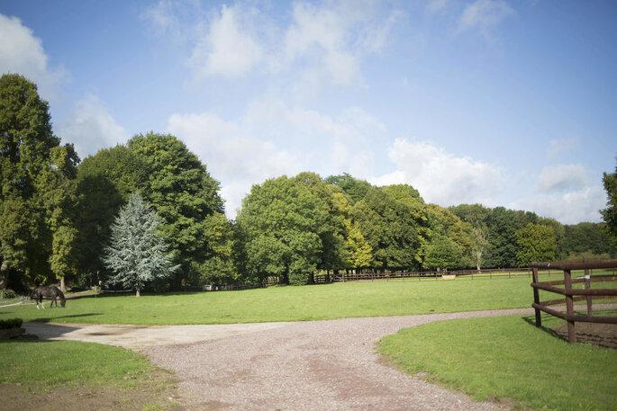 Grand parc arboré avec des chevaux comme extérieur d'un lieu de réception de mariage