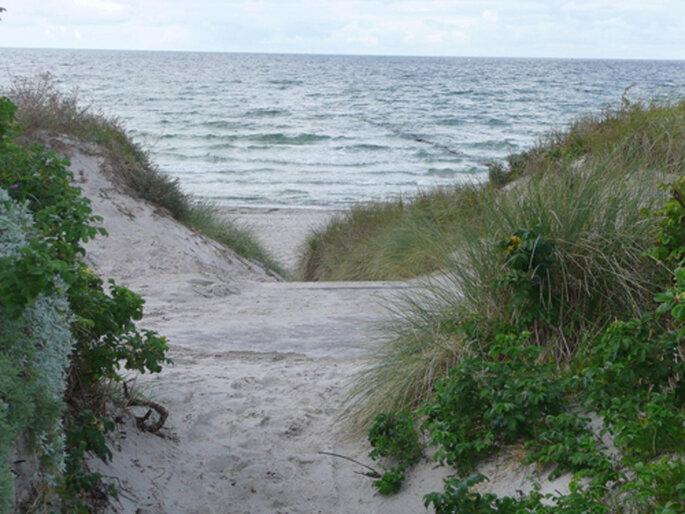 Weg durch die Dünen zum Strand
