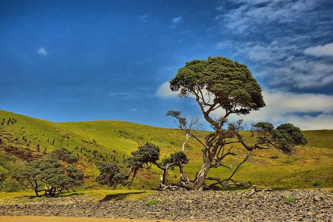 Photo : VisualHunt - south-africa-coffee-bay-hole-in-the-wall-blue-sky