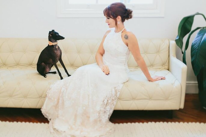 vestido noiva com cachorro